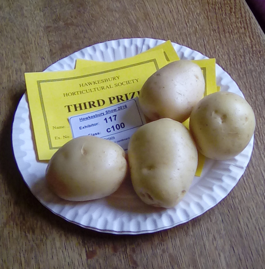 PROPS_spuds_hawks_show_2016